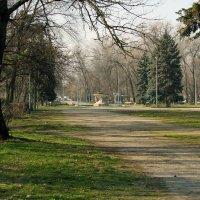 февраль в парке. :: barsuk lesnoi