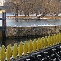 Скульптура «Марш пингвинов через Влтаву». :: ИРЭН@ .