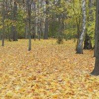 Осень! :: Aleksandr