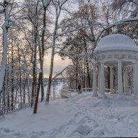 Вечер в старом парке :: Galina