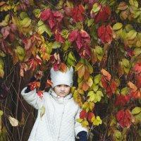 Осень :: Толеронок Анна