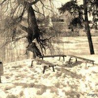 Андрушевка, усадьба Терещенко, старинные фото XIX века :: Сергей Ионников