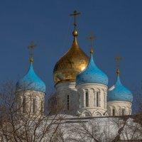 Купола Новоспасского :: Александра
