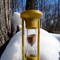 Истекает время холодов... :: Андрей Заломленков