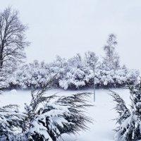 парк в Строгино :: Игорь