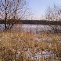Всё тоже озеро. :: галина