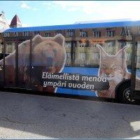 Веселый автобус в зоопарк :: Вера