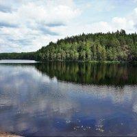 Национальный парк «Реповеси». Озеро Катаяярви :: Елена Павлова (Смолова)