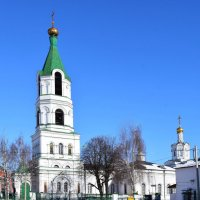Рязань. Борисо-Глебский кафедральный собор :: Galina Leskova