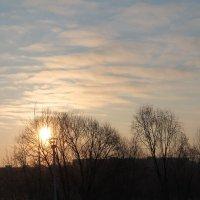солнце просыпается :: Надежда Белорусова