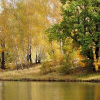 Осенний пруд :: Вячеслав Маслов