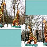 Декор в городском парке :: Нина Бутко