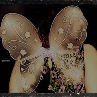 Мари-большая бабочка! :: Роза Бара