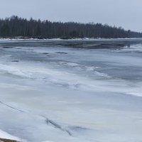 Ладожское озеро :: Nika Polskaya