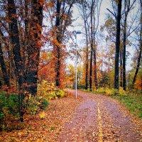 Осенний парк :: Александр Шишин