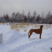 В зимнем парке....2 :: LORRA ***