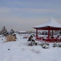 В зимнем парке...3 :: LORRA ***