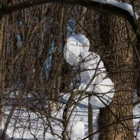 Снеговик на турнике. :: Владимир Безбородов