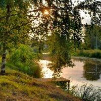 Летний вечер у реки :: Olcen Len