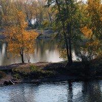 Осень по берегам реки :: Екатерина Торганская