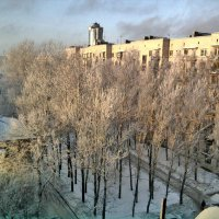 Утро морозное! :: Натали Пам