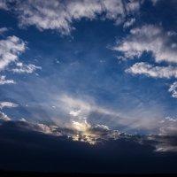 Над нами только небо :: Виталий Павлов