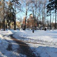Петровский парк :: Владимир Прокофьев