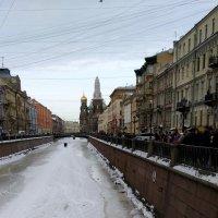 Канал Грибоедова. 8 марта. :: Елена Байдакова