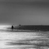 Приятное одиночество. :: Lidija Abeltinja