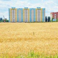 Город наступает. :: vodonos241