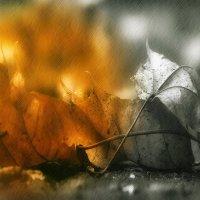 Воспоминания.....Жёлтые листья и серые будни, Тёмные лужи на мокром асфальте… :: leonid