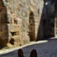 Воскресная прогулка с собакой :: Svetlana Erashchenkova
