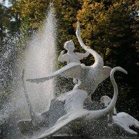 Родной город-1964. :: Руслан Грицунь