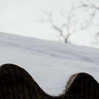 Фотоконкурс ВРЕМЕНА ГОДА. Март 2018. Луганск ЛНР :: Наталья (ShadeNataly) Мельник
