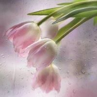 Весеннее настроение :: Lusi Almaz