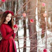 jabłka na śniegu :: виктор омельчук