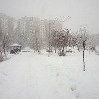Зима в конце марта :: Serg