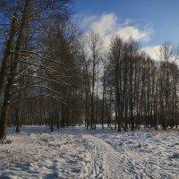 Зимний день а парке :: Алексей (GraAl)