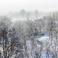 Вдаль в туман :: Юрий Стародубцев
