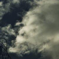 Старик в облаке. :: Елена Kазак