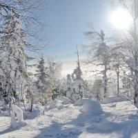 зима 12 :: Константин Трапезников
