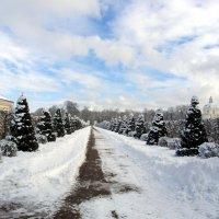 20 марта 2018 года. Абсолютная зима! :: Лия ☼