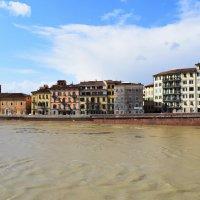 Италия,  город  Пиза...   желтые волны  реки  Арно... :: Galina Leskova