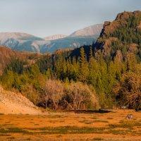 На краю Курайской степи :: alteragen Абанин Г.
