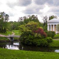 Павловский парк, г.Павловск, Санкт-Петербург :: Елена Кириллова