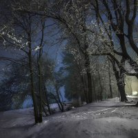 Последний писк зимы :: Sergey-Nik-Melnik Fotosfera-Minsk