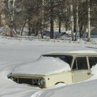 В снежном плену :: OLLES