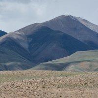Где-то возле Монголии :: Валерий Михмель