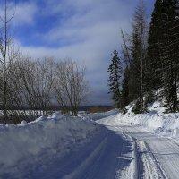Наши белые дороги. :: Galina S*