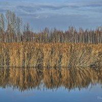 Зеркало осени. :: Евгений Лимонтов